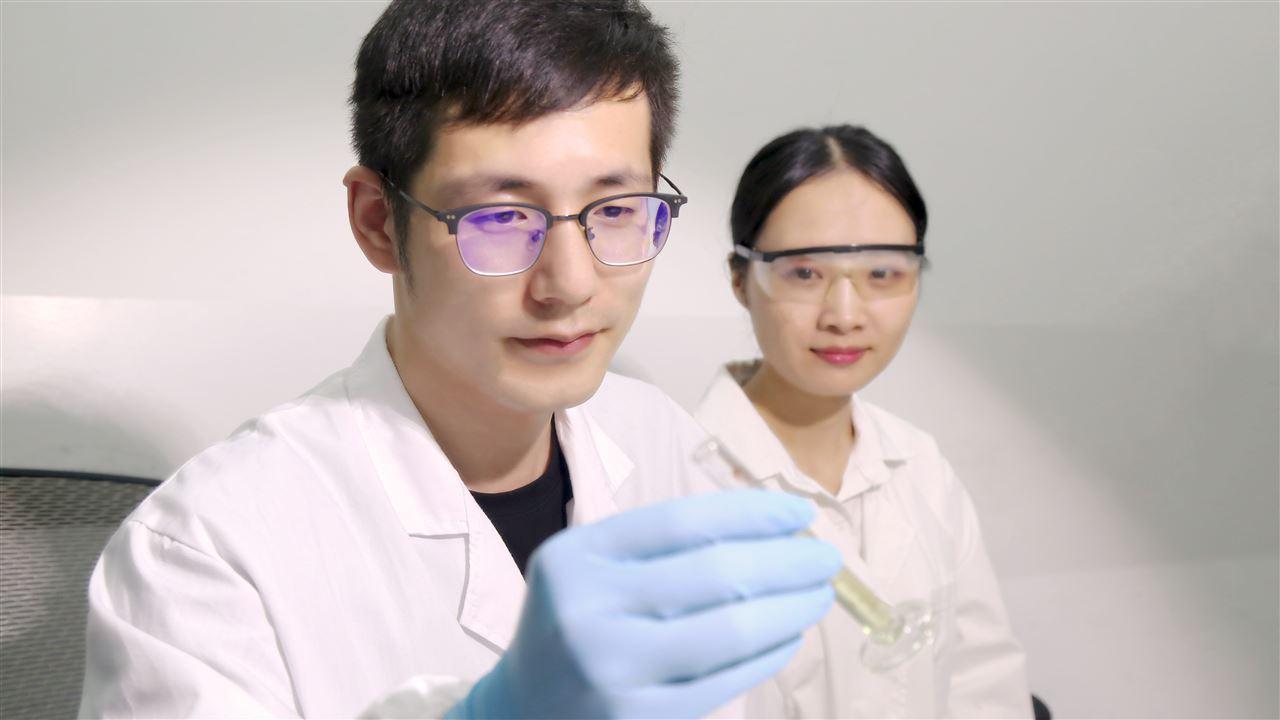 抗生素滥用亟待解决 新传感器助力抗生素快检