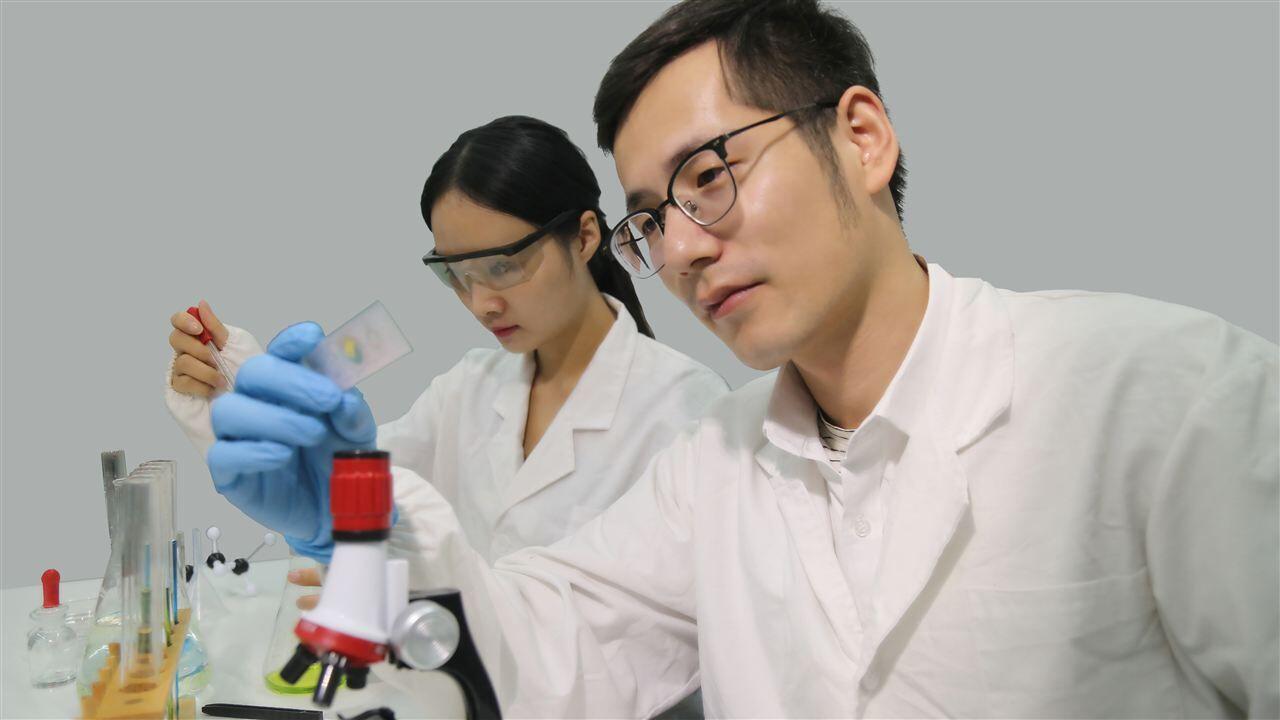 两家公司中标辛集发改局粮食检测仪器采购项目